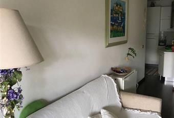 Il pavimento è di parquet, il salone è luminoso Abruzzo TE Tortoreto