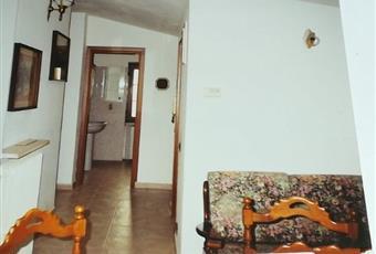 Il salone è luminoso, con soffitto a volta, il pavimento è piastrellato Piemonte AL Alessandria