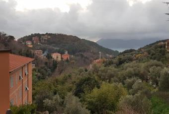 Foto ALTRO 6 Liguria SP Lerici