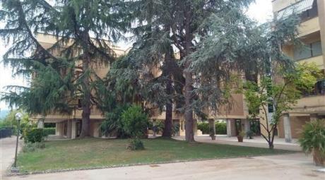 Appartamento a due passi dalle mura di Lucca