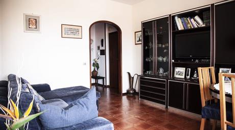 Cecina, appartamento arredato con autorimessa