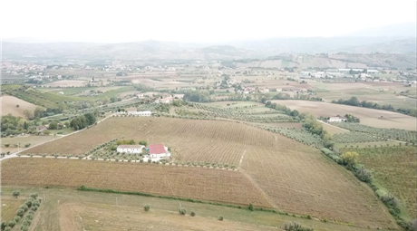 Az agricola vitivinicola in vendita