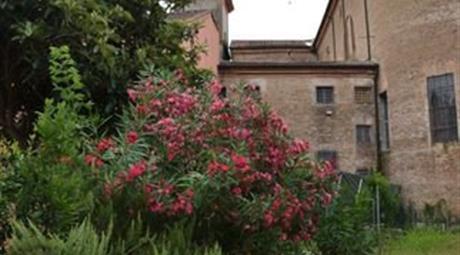 Villetta a Schiera in Vendita in Via Santissimi Martino e Severo 6 a Crespino
