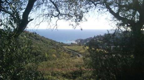 Rustico vista mare