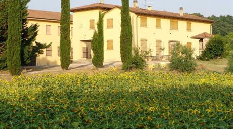 Azienda agricola in Vendita in Via della Vigna 7 a Deruta