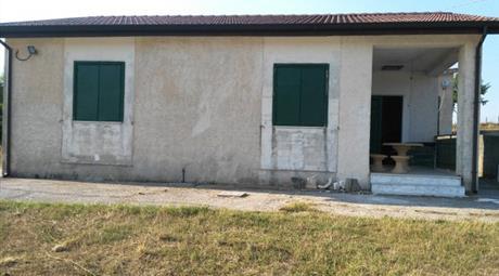 Azienda agricola con terreno, casa, deposito in vendita a Balvano