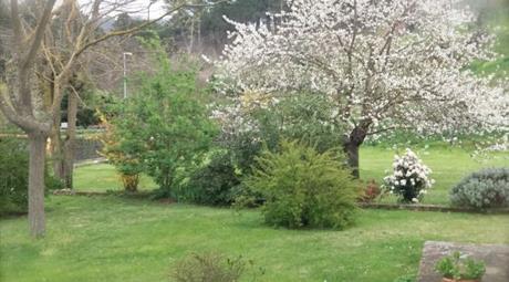 IMMOBILE 100 mq + grande giardino e terreno