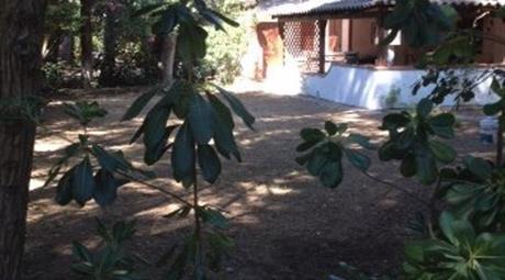 Villa angolare BORGO PINETO anello F