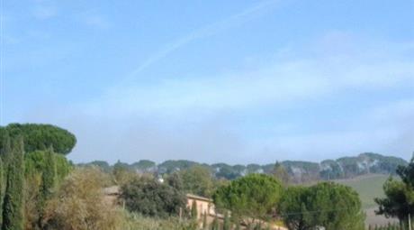 Ristorante in Vendita a Monteroni d'Arbia