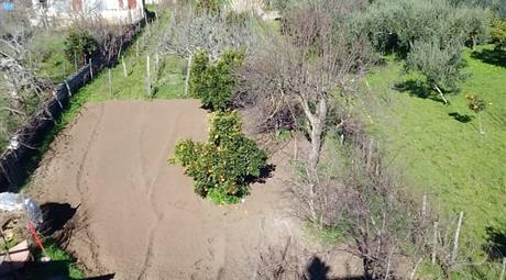 Appartamento 250 mq,1000 mq giardino + cantina in vendita
