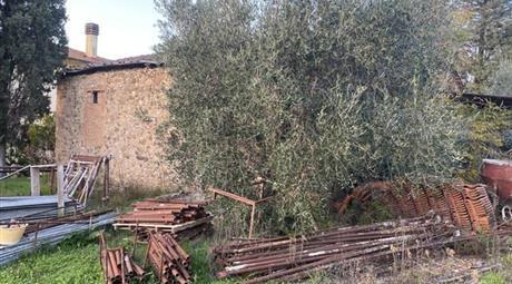 Proprietà rustica in vendita in  Località bivio ravi a Gavorrano