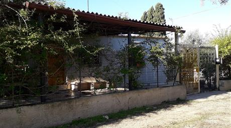 Vendesi casa di campagna con terreno uliveto