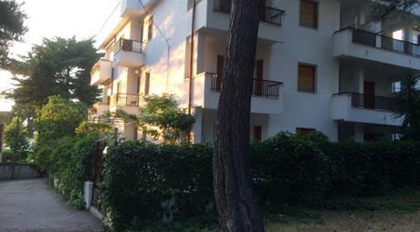 Appartamento in pineta