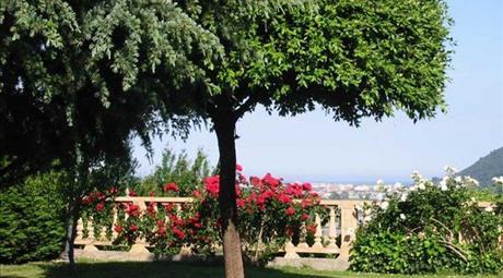 Immobile Di Prestigio in Vendita a Villanova d'Albenga