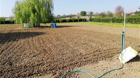 Vendesi terreno agricolo 4200Mq a Santarcangelo di Romagna