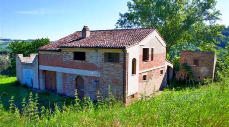 Casolare e Azienda Agricola Biologica nelle Marche