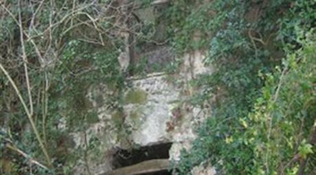 Terreno con rustico in vendita in via Cafaggio s.n.c