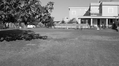 Residence - Villa
