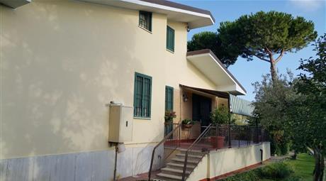 Villa nuova florida