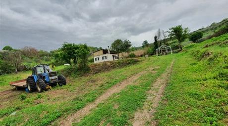 Terreno edificabile,casa abitabile,capannone in vendita in Marcellina