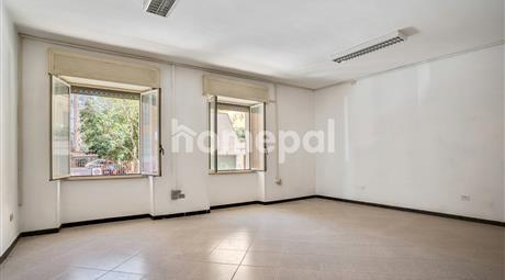 Ampio appartamento con terrazzo in zona centrale