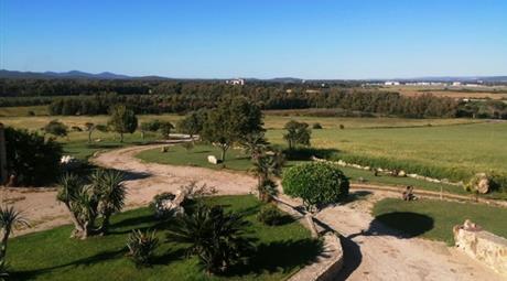 Azienda Agricola in vendita a Alghero