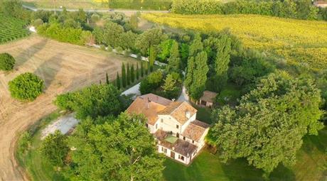 Azienda agricola in Vendita in via Pontemagno 7 a Monte Roberto