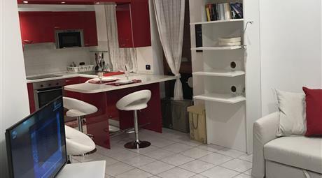 Appartamento in affitto per brevi periodi vicinanze San Raffaele