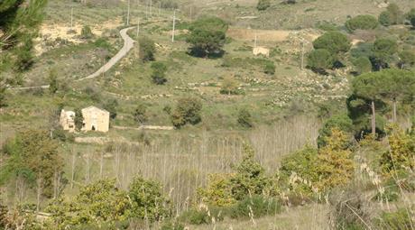 32ha Terreni agricoli +  casali rurali