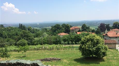 Vendita terreno edificabile collinare panoramica a Parella-Ivrea