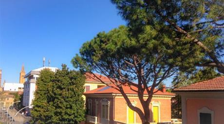 Trilocale in Vendita in zona Centro a Forlì