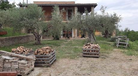 Azienda agricola con casa ristrutturata e terreni