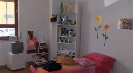 Camera singola in ampio appartamento
