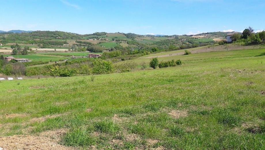 Vendesi terreno agricolo a Viguzzolo 5.670,00 mq
