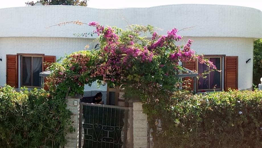 Villa in vendita in via la macchia, 42
