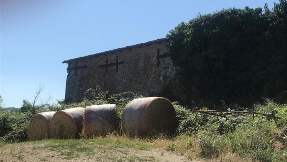 Rustico e terreno in vendita a Lugagnano Val d'Arda (PC)